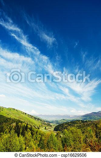 bjerge, grønnes skov, landskab - csp16629506