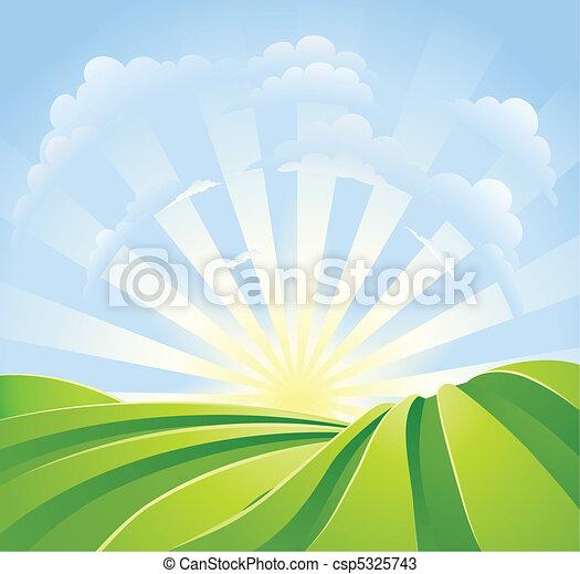 blå, idylliske, felter, solskin, himmel, stråler, grønne - csp5325743