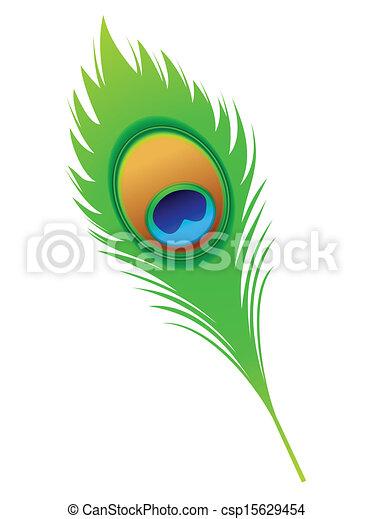 påfugl fjer, kunstneriske, abstrakt - csp15629454