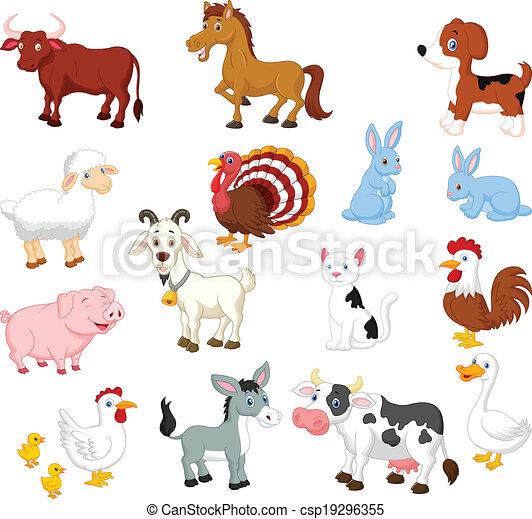 sæt, dyr, samling, agerjord - csp19296355