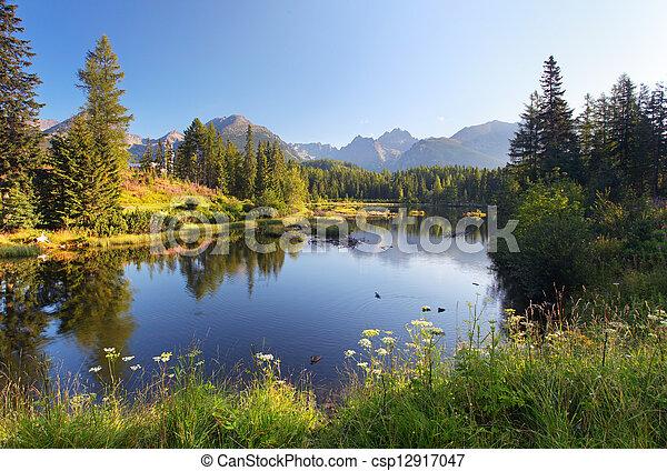smukke, bjerg, natur, pleso, -, scene, sø, slovakia, tatra, strbske - csp12917047