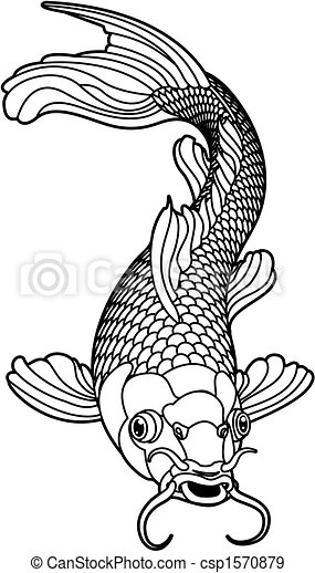 sort, fish, karpe, koi, hvid - csp1570879