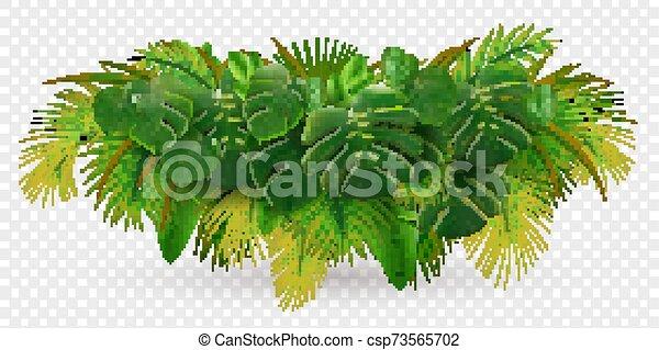 tropisk, blade, busk, komposition - csp73565702